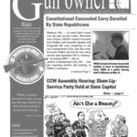Download: WGO Newsletter, Spring 2011